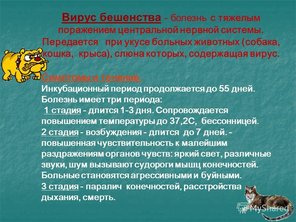 Вирус ОСПЫ.
