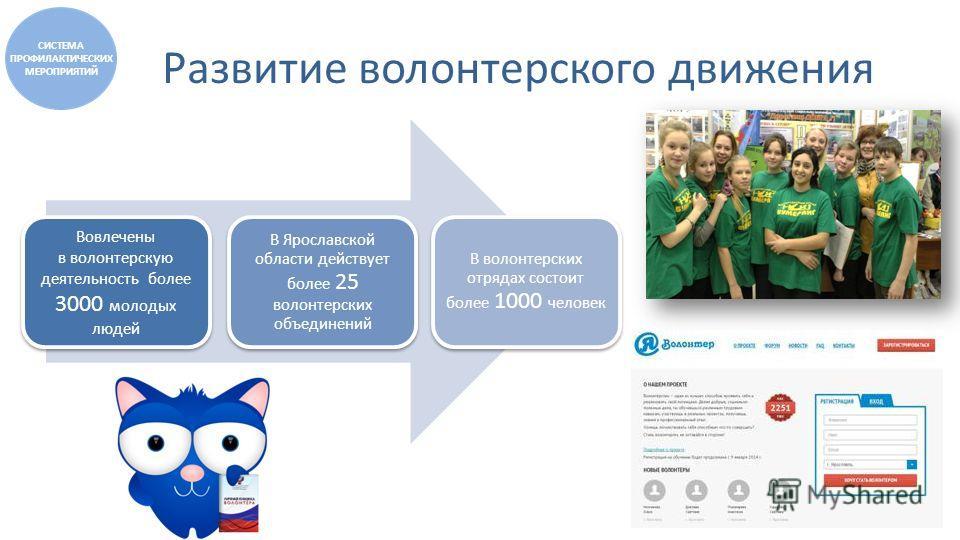 Развитие волонтерского движения Вовлечены в волонтерскую деятельность более 3000 молодых людей В Ярославской области действует более 25 волонтерских объединений В волонтерских отрядах состоит более 1000 человек СИСТЕМА ПРОФИЛАКТИЧЕСКИХ МЕРОПРИЯТИЙ