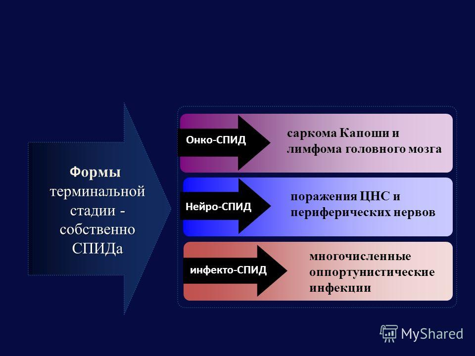 Ф ормы терминальной стадии - собственно СПИДа саркома Капоши и лимфома головного мозга поражения ЦНС и периферических нервов многочисленные оппортунистические инфекции Онко-СПИД Нейро-СПИД инфекто-СПИД