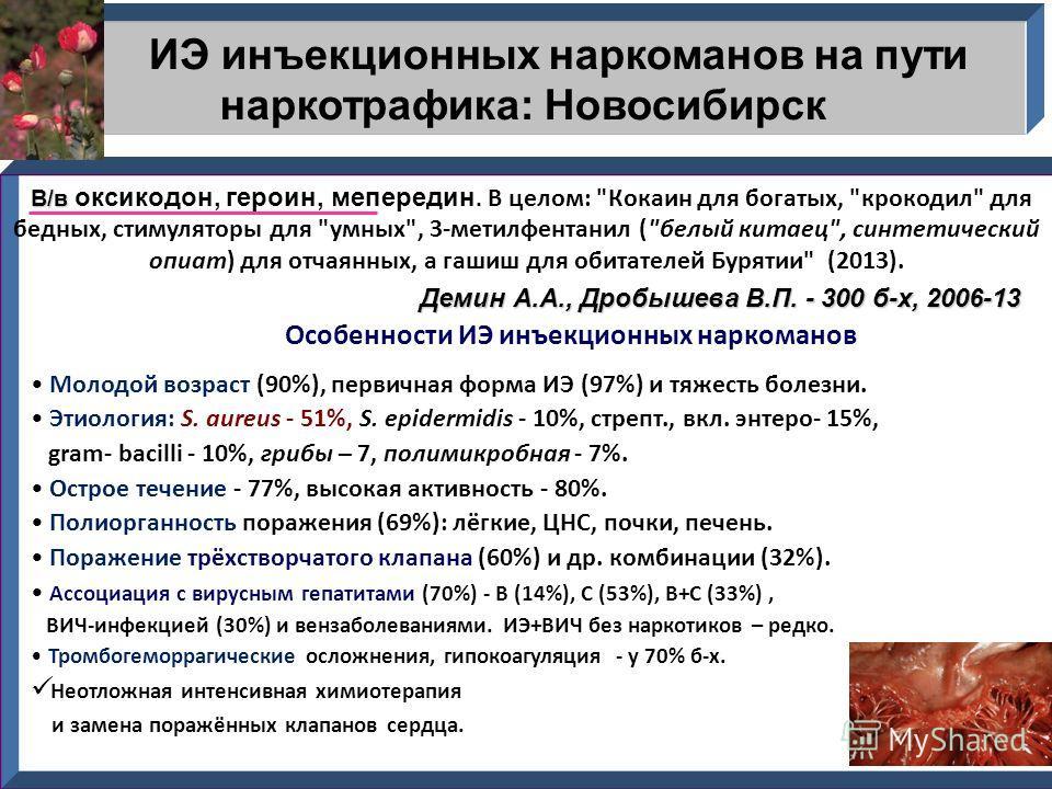ИЭ инъекционных наркоманов на пути наркотрафика: Новосибирск В/в В/в оксикодон, героин, мепередин. В целом: