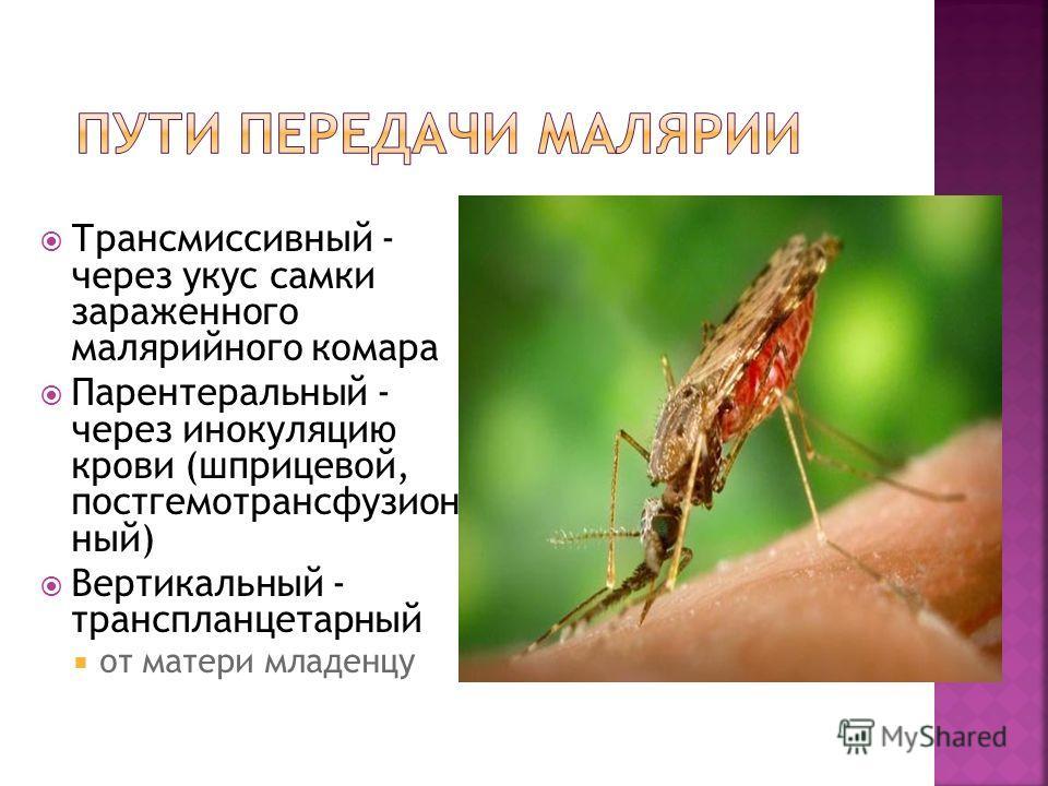 Трансмиссивный - через укус самки зараженного малярийного комара Парентеральный - через инокуляцию крови (шприцевой, постгемотрансфузион ный) Вертикальный - транспланцетарный от матери младенцу