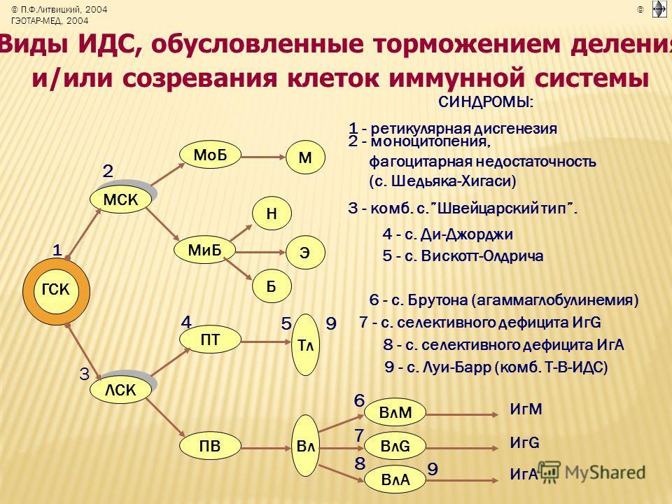 Виды ИДС, обусловленные торможением деления и/или созревания клеток иммунной системы СИНДРОМЫ: 1 - ретикулярная дисгенезия 2 - моноцитопения, фагоцитарная недостаточность (с. Шедьяка-Хигаси) 3 - комб. с.Швейцарский тип. 4 - с. Ди-Джорджи 5 - с. Виско