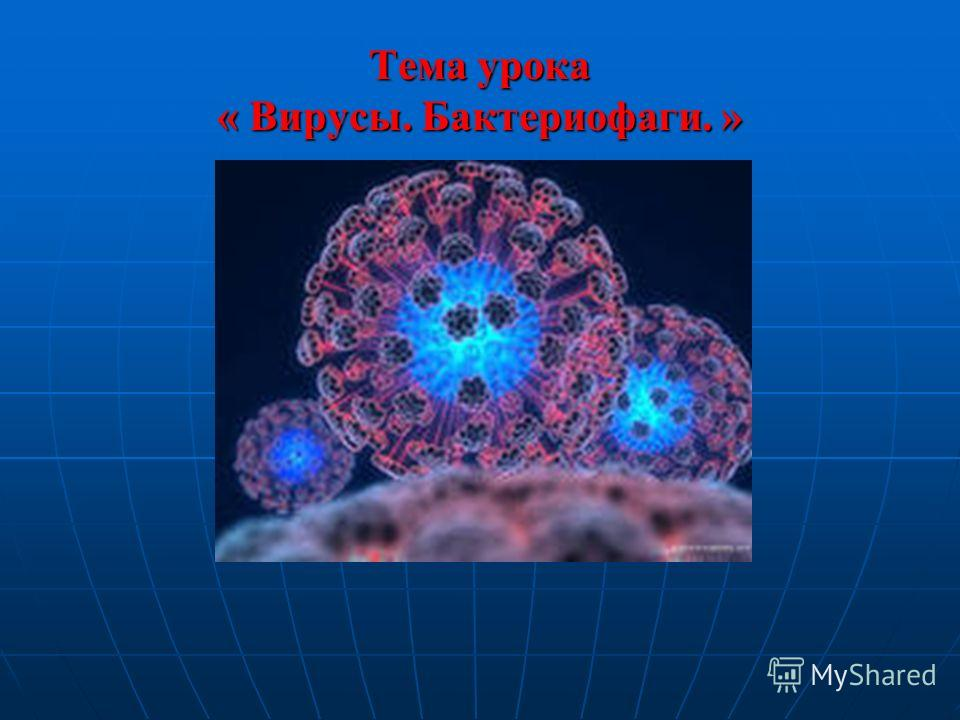 Тема урока « Вирусы. Бактериофаги. »