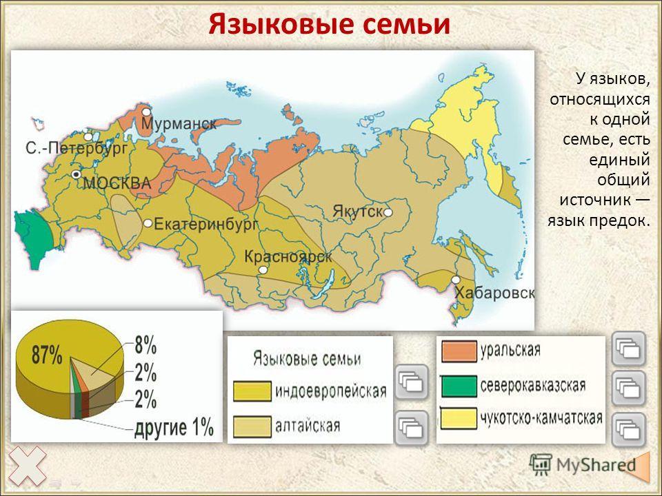 Языковые семьи У языков, относящихся к одной семье, есть единый общий источник язык предок.
