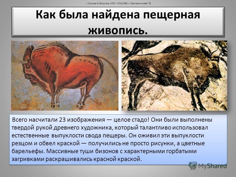 г.Усолье-Сибирское, МОУ «СОШ 2», Масленникова Г.В. Всего насчитали 23 изображения целое стадо! Они были выполнены твердой рукой древнего художника, который талантливо использовал естественные выпуклости свода пещеры. Он оживил эти выпуклости резцом и