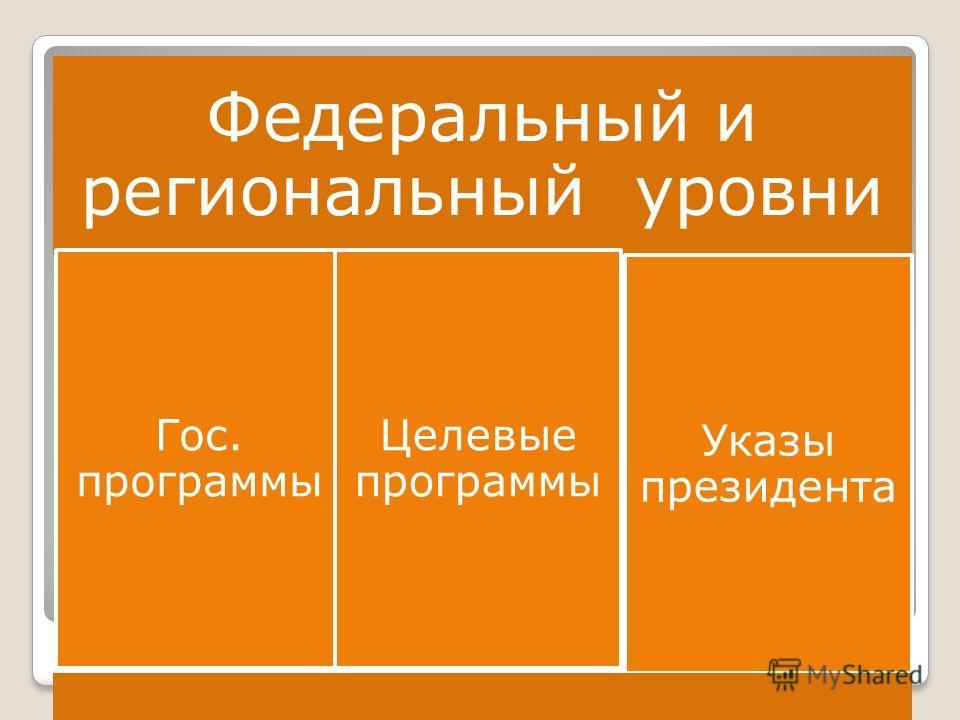 Федеральный и региональный уровни Гос. программы Целевые программы Указы президента