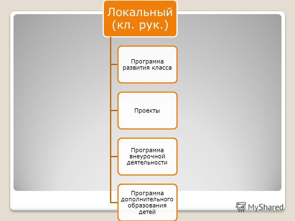 Локальный (кл. рук.) Программа развития класса Проекты Программа внеурочной деятельности Программа дополнительного образования детей