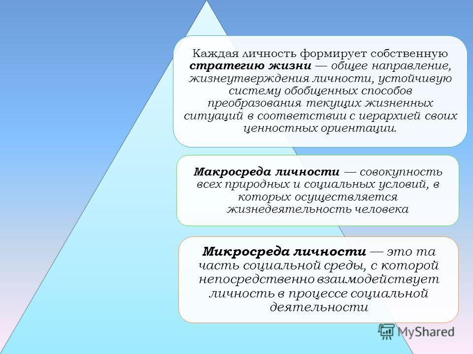 Каждая личность формирует собственную стратегию жизни общее направление, жизнеутверждения личности, устойчивую систему обобщенных способов преобразования текущих жизненных ситуаций в соответствии с иерархией своих ценностных ориентации. Макросреда