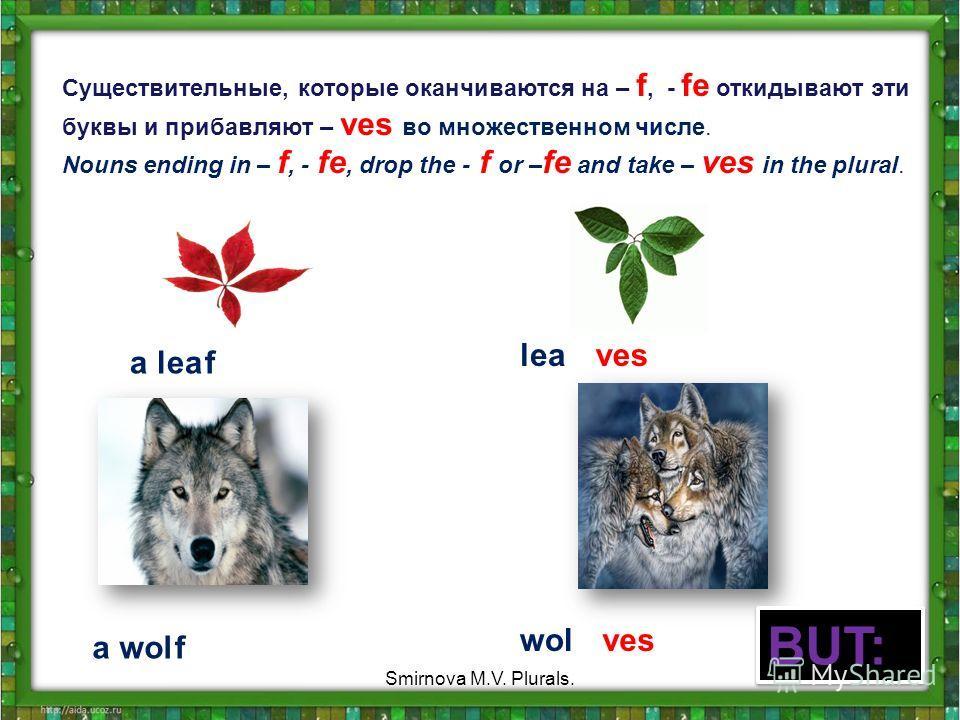 Cуществительныe, которые оканчиваются на – f, - fe откидывают эти буквы и прибавляют – ves во множественном числе. Nouns ending in – f, - fe, drop the - f or – fe and take – ves in the plural. a leaf leaves a wolf wolves BUT: 12 Smirnova M.V. Plurals