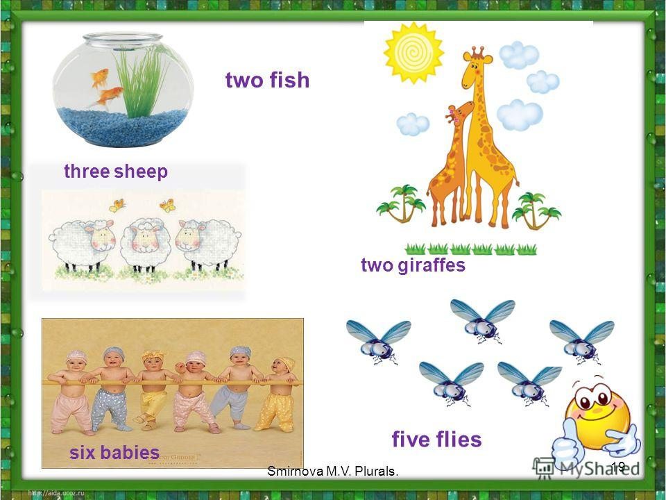 two fish three sheep six babies five flies two giraffes 19 Smirnova M.V. Plurals.