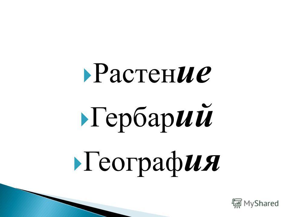 Растен ие Гербар ий Географ ия