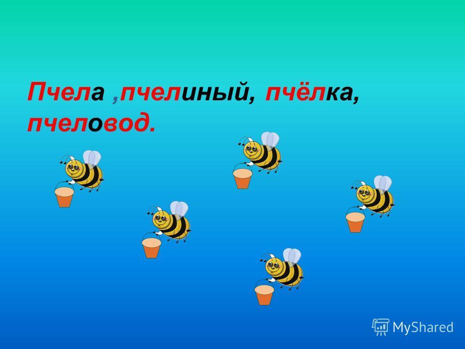 Пчела,пчелиный, пчёлка, пчеловод.