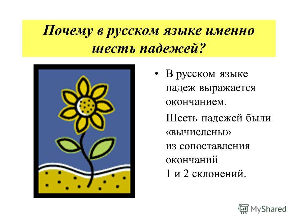 Почему в русском языке именно шесть падежей? В русском языке падеж выражается окончанием. Шесть падежей были «вычислены» из сопоставления окончаний 1 и 2 склонений.