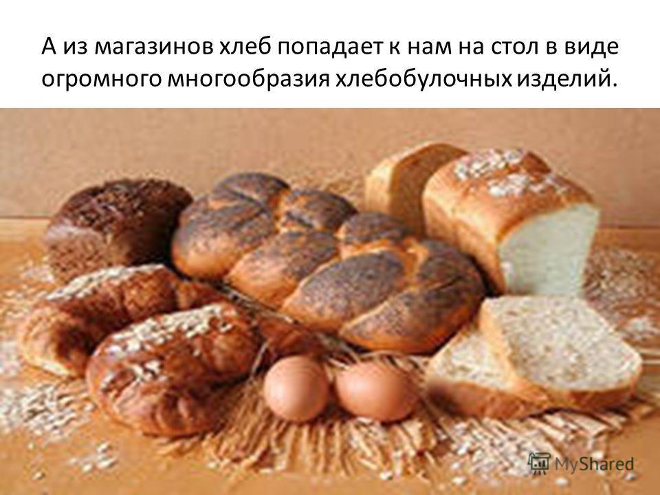 А из магазинов хлеб попадает к нам на стол в виде огромного многообразия хлебобулочных изделий.