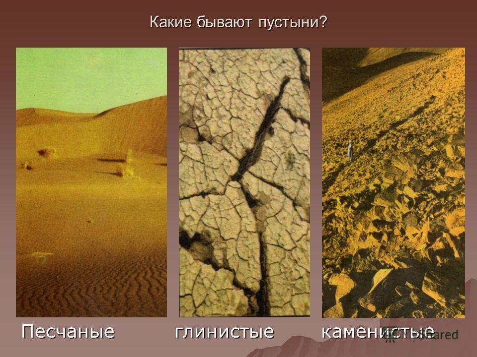 Какие бывают пустыни? Песчаные глинистые каменистые