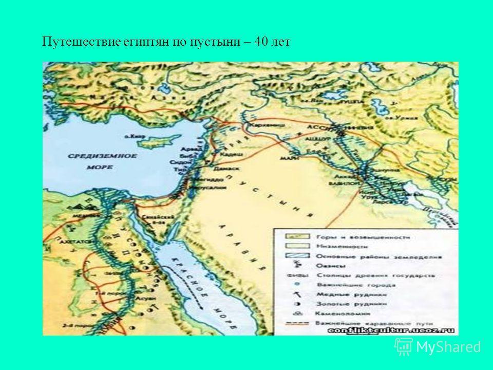 Путешествие египтян по пустыни – 40 лет