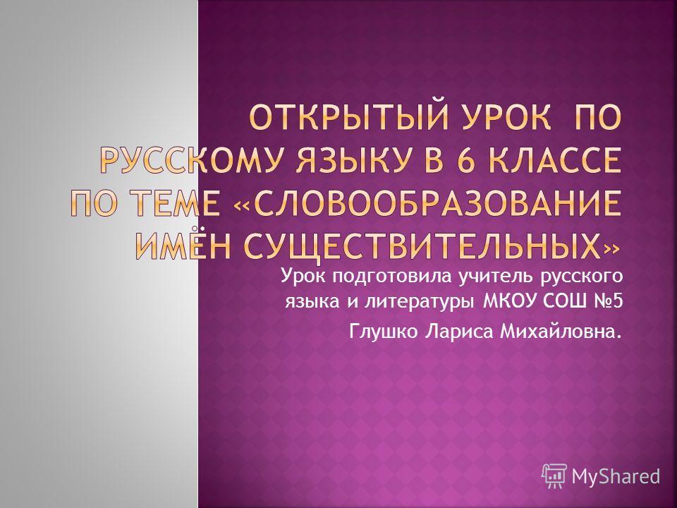 Урок подготовила учитель русского языка и литературы МКОУ СОШ 5 Глушко Лариса Михайловна.