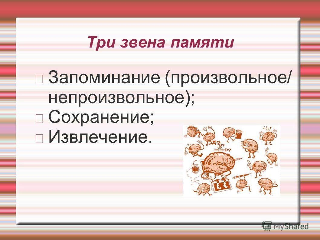 Три звена памяти Запоминание (произвольное/ непроизвольное); Сохранение; Извлечение.