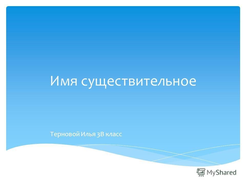 Имя существительное Терновой Илья 3В класс