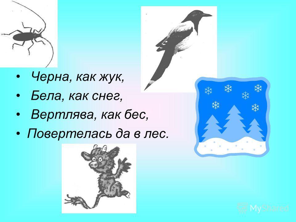 Черна, как жук, Бела, как снег, Вертлява, как бес, Повертелась да в лес.
