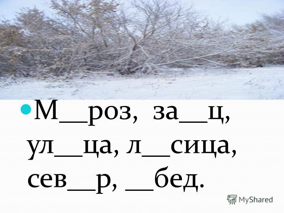 Словарная работа М__роз, за__ц, ул__ца, л__лица, сев__р, __бед.
