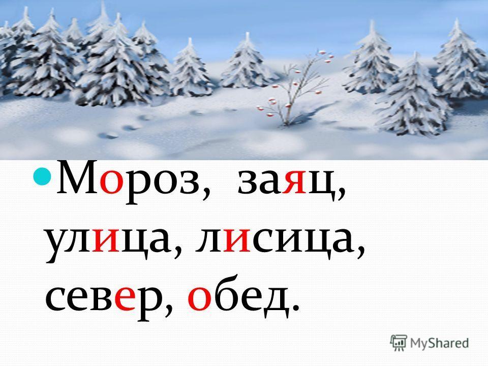 Мороз, заяц, улица, лилица, север, обед.