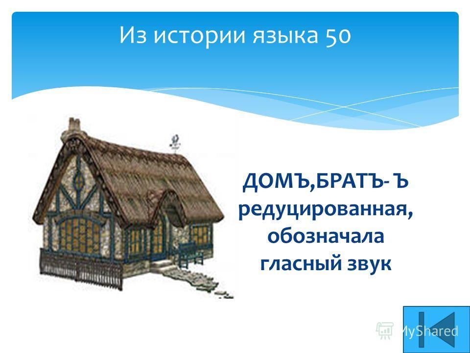 Из истории языка 50 ДОМЪ,БРАТЪ- Ъ редуцированная, обозначала гласный звук