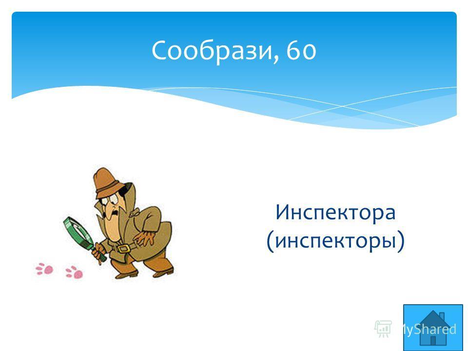 Сообрази, 60 Инспектора (инспекторы)