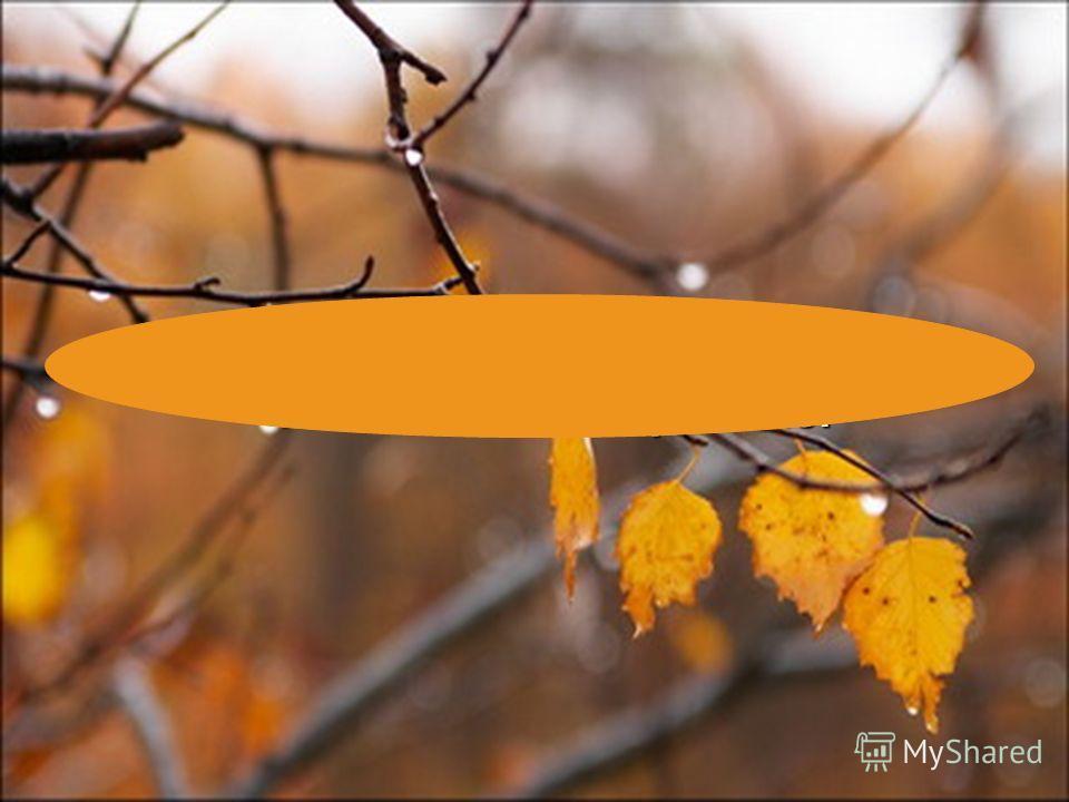 Осень вызывает грустные чувства и печальное настроение.
