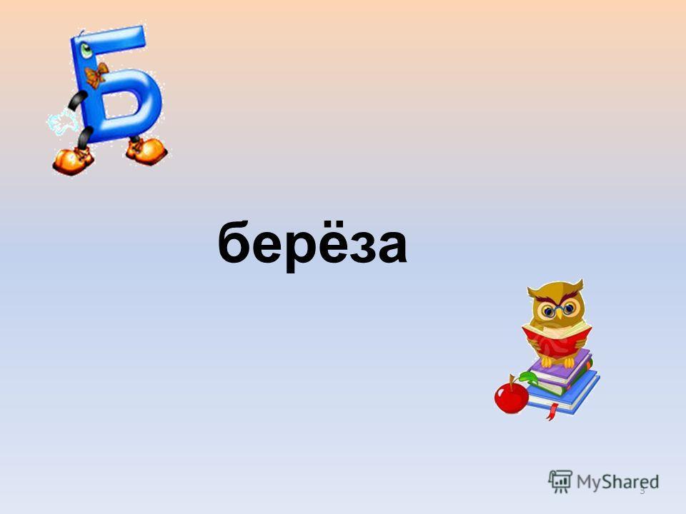 берёза 3