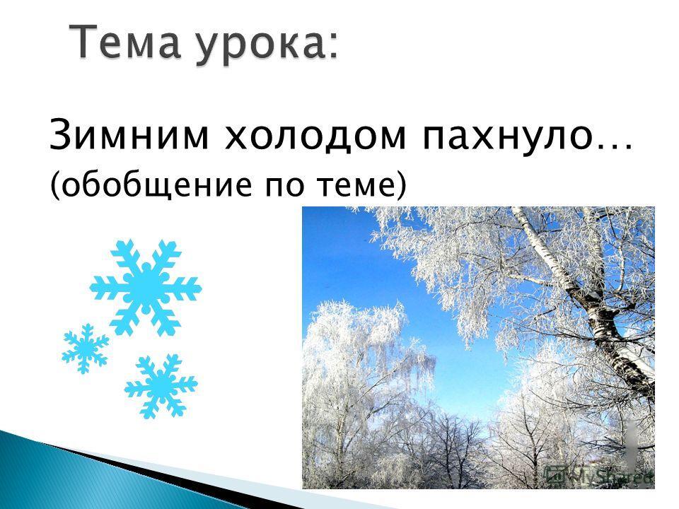 Зимним холодом пахнуло… (обобщение по теме)