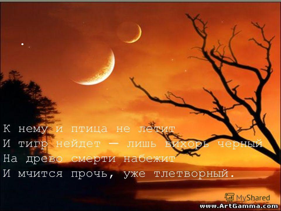 . К нему и птица не летит И тигр нейдет лишь вихорь черный На древо смерти набежит И мчится прочь, уже тлетворный.