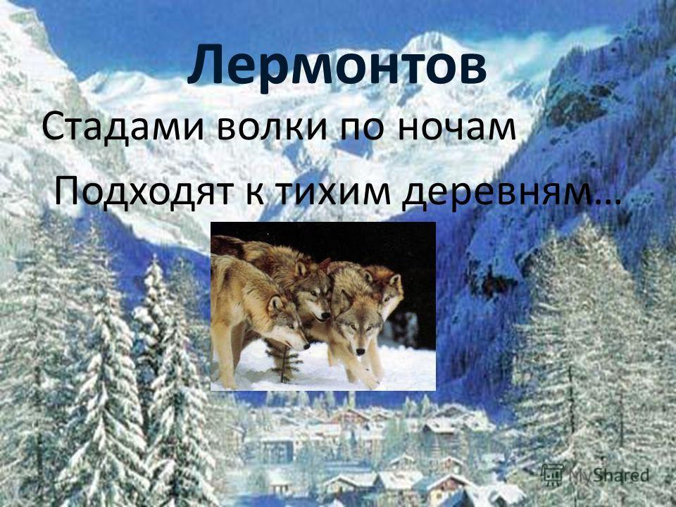 Лермонтов Стадами волки по ночам Подходят к тихим деревням…
