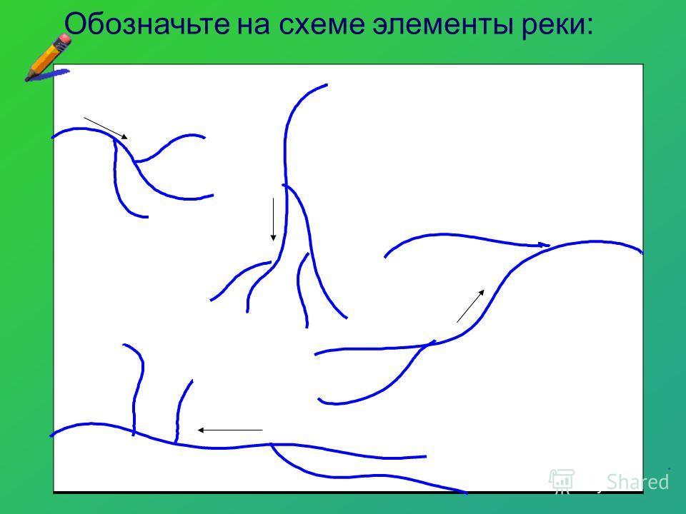 Обозначьте на схеме элементы реки: 1. Исток 2. Устье 3. Правый приток 4. Левый приток 5. Водораздел