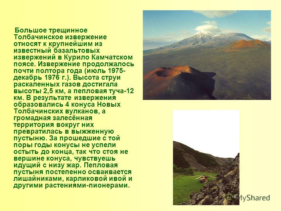Большое трещинное Толбачинское извержение относят к крупнейшим из известный базальтовых извержений в Курило Камчатском поясе. Извержение продолжалось почти полтора года (июль 1975- декабрь 1976 г.). Высота струи раскаленных газов достигала высоты 2,5