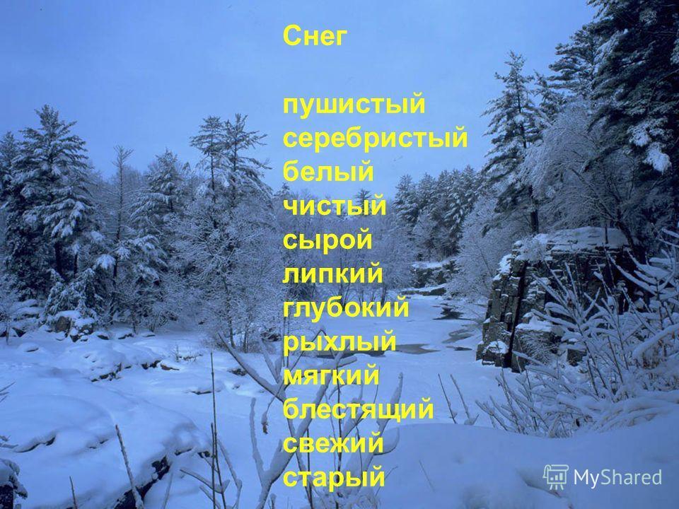 Зима сказочная снежная белоснежная малоснежная ледяная северная мягкая вьюжная великолепная суровая прекрасная чудесная необычная величавая чародейка красавица волшебница