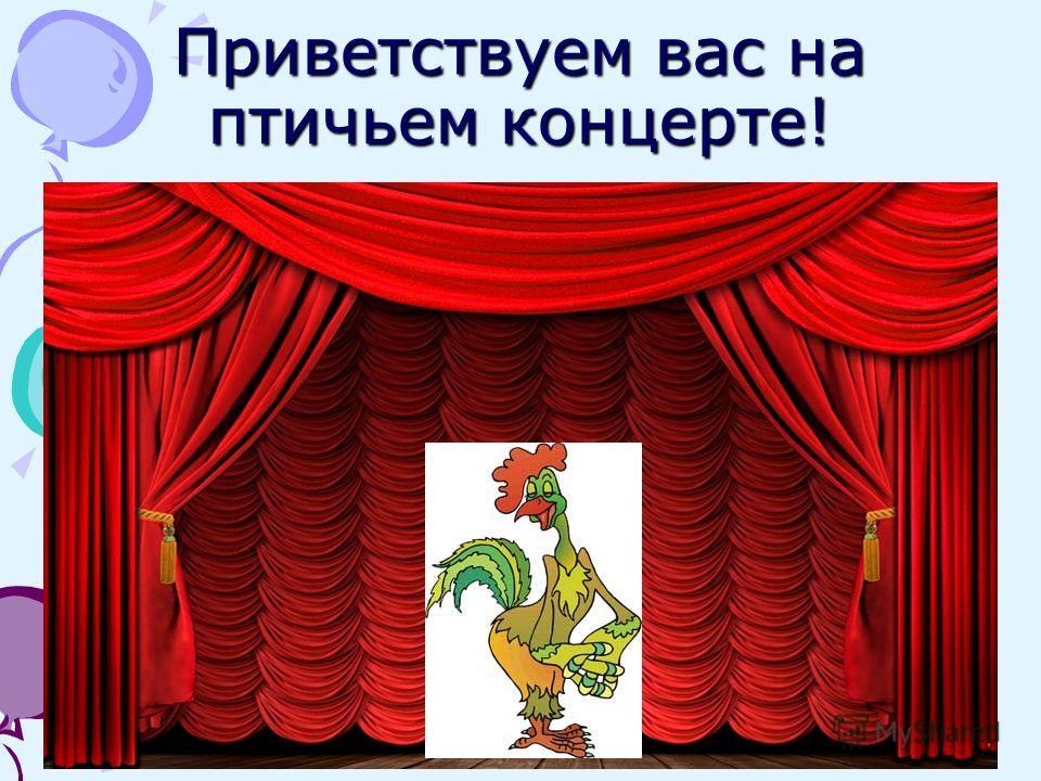 Приветствуем вас на птичьем концерте!