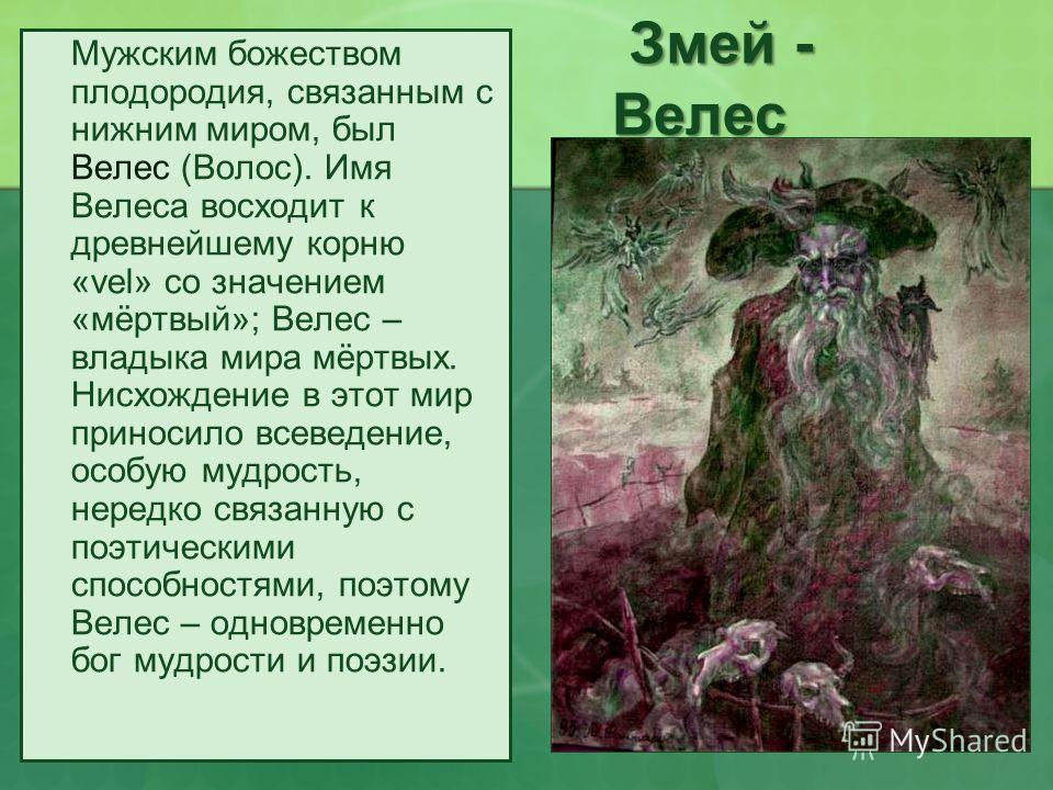 Змей - Велес Мужским божеством плодородия, связанным с нижним миром, был Велес (Волос). Имя Велеса восходит к древнейшему корню «vel» со значением «мёртвый»; Велес – владыка мира мёртвых. Нисхождение в этот мир приносило всеведение, особую мудрость,