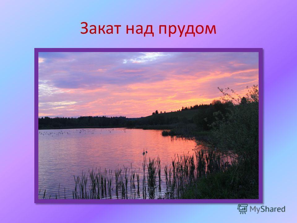 Закат над прудом