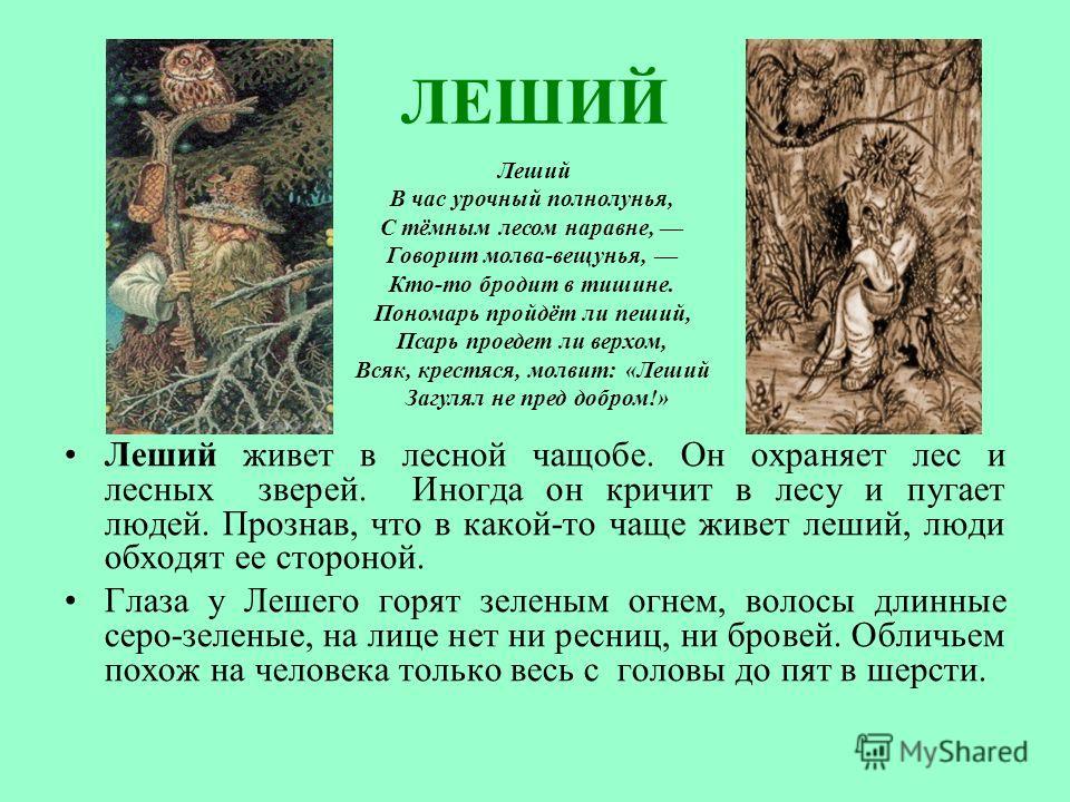 ЛЕШИЙ Леший живет в лесной чащобе. Он охраняет лес и лесных зверей. Иногда он кричит в лесу и пугает людей. Прознав, что в какой-то чаще живет леший, люди обходят ее стороной. Глаза у Лешего горят зеленым огнем, волосы длинные серо-зеленые, на лице н