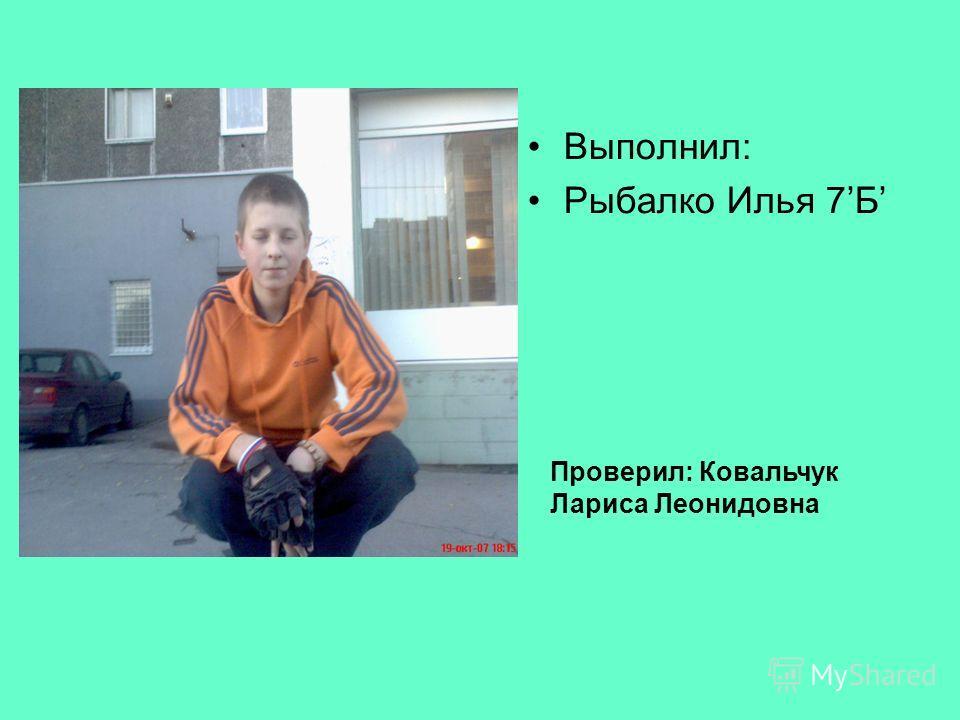 Выполнил: Рыбалко Илья 7Б Проверил: Ковальчук Лариса Леонидовна