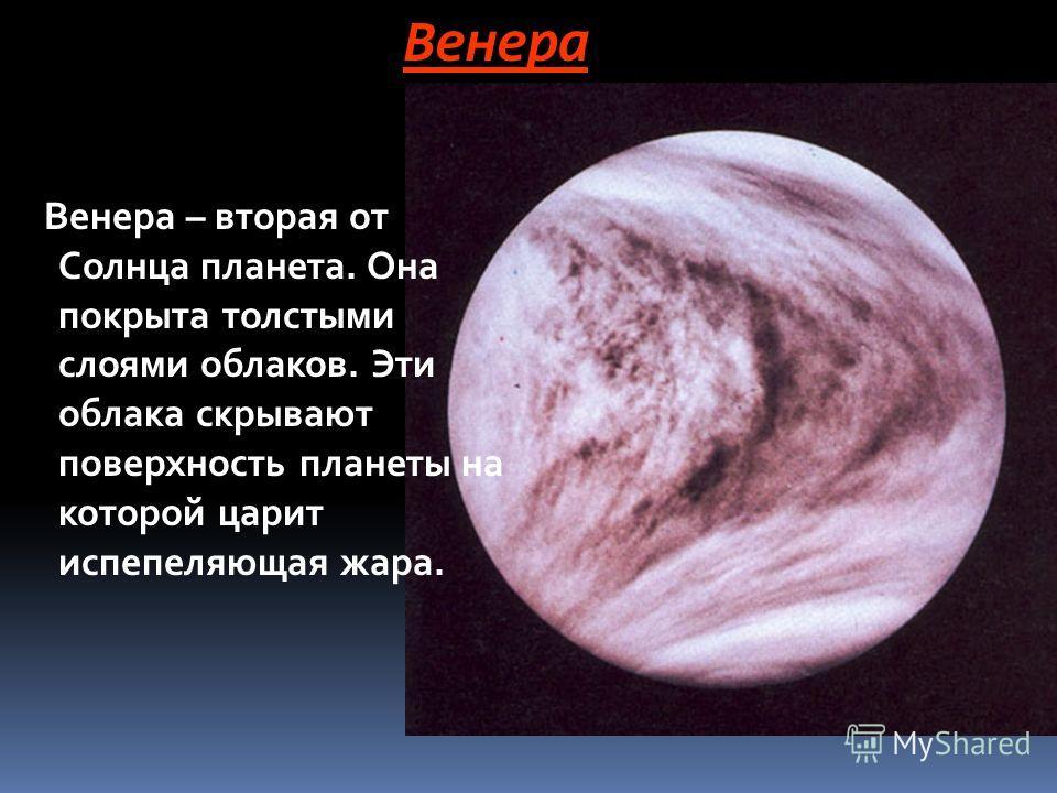 Венера Венера – вторая от Солнца планета. Она покрыта толстыми слоями облаков. Эти облака скрывают поверхность планеты на которой царит испепеляющая жара.