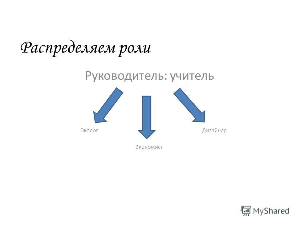 Распределяем роли Руководитель: учитель Эколог Дизайнер Экономист