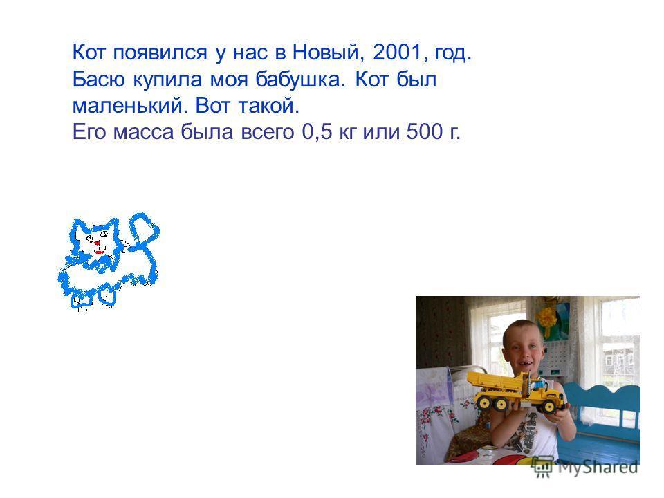 Кот появился у нас в Новый, 2001, год. Басю купила моя бабушка. Кот был маленький. Вот такой. Его масса была всего 0,5 кг или 500 г.