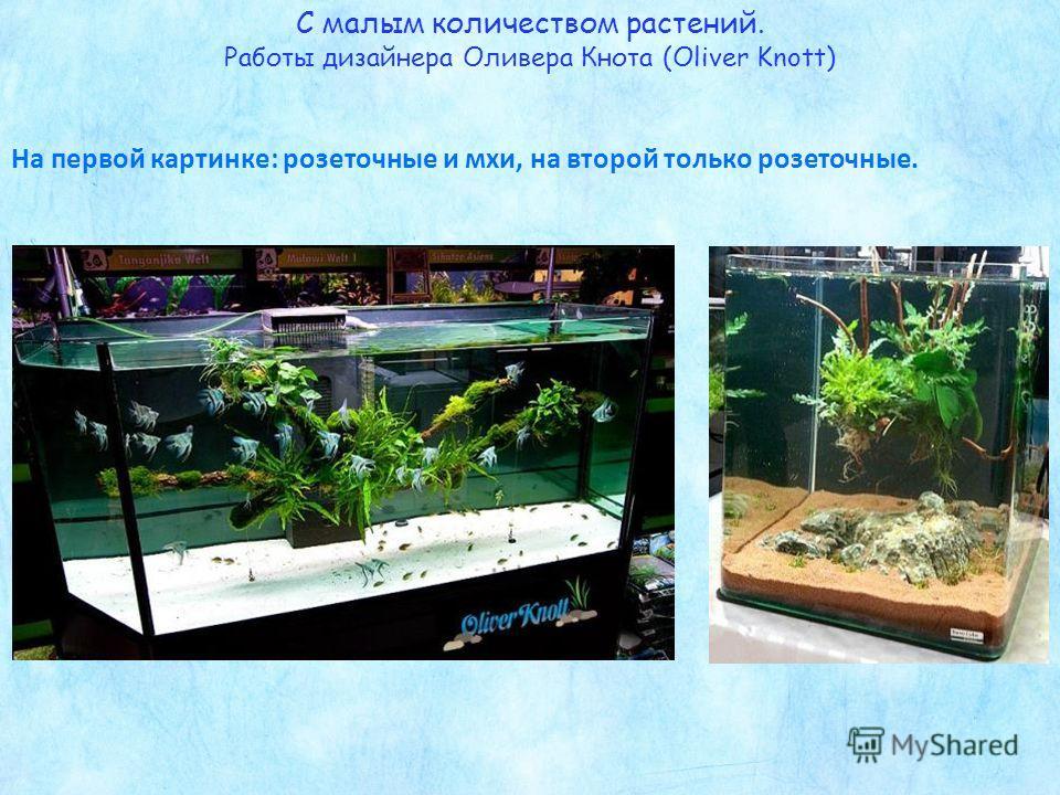 С малым количеством растений. Работы дизайнера Оливера Кнота (Оliver Knott) На первой картинке: розеточные и мхи, на второй только розеточные.