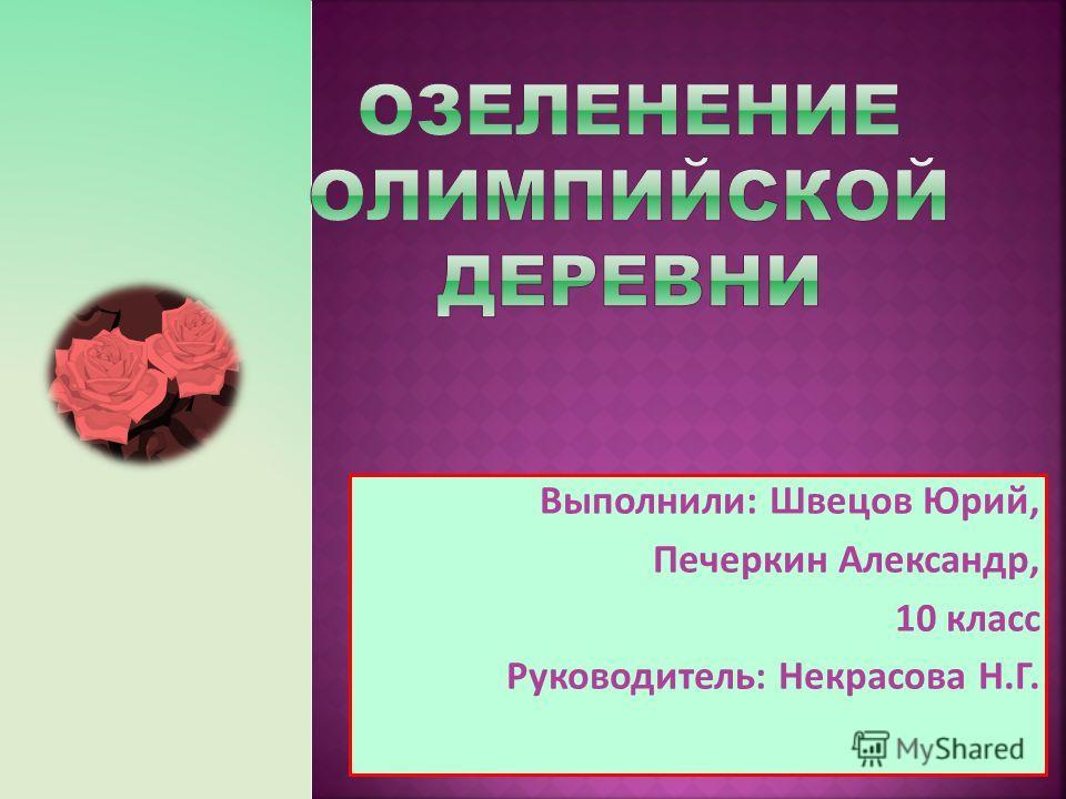 Выполнили: Швецов Юрий, Печеркин Александр, 10 класс Руководитель: Некрасова Н.Г.