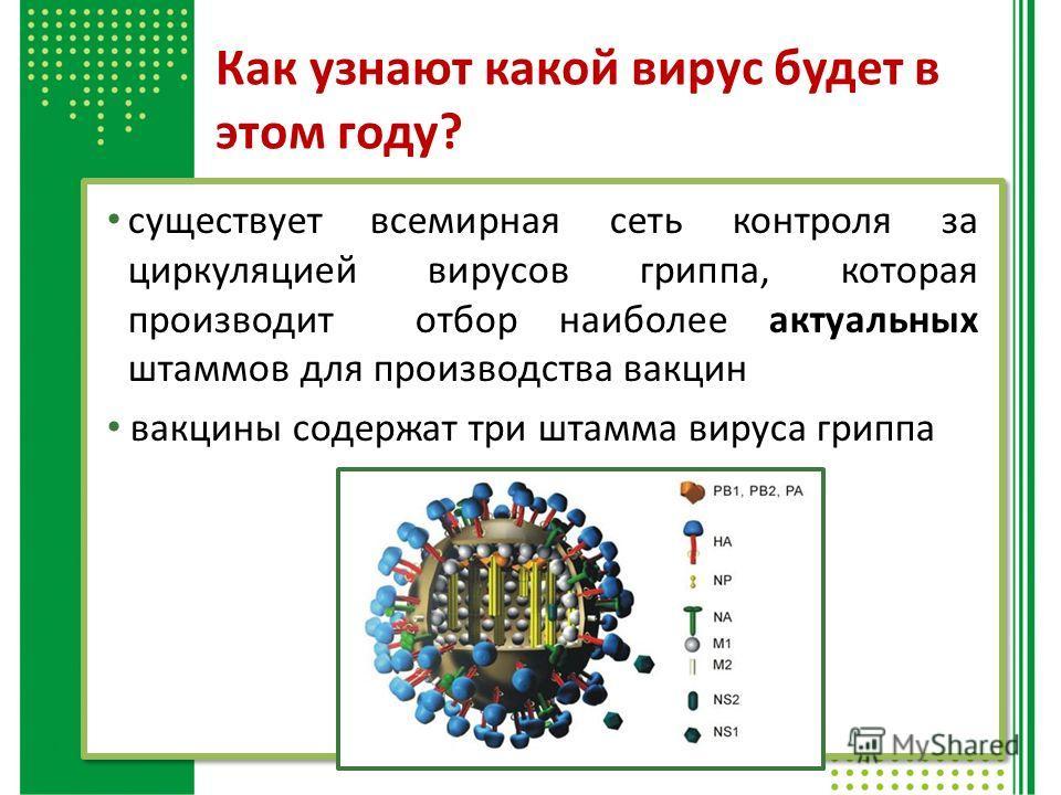 Как узнают какой вирус будет в этом году? существует всемирная сеть контроля за циркуляцией вирусов гриппа, которая производит отбор наиболее актуальных штаммов для производства вакцин вакцины содержат три штамма вируса гриппа
