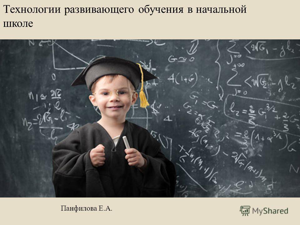 Технологии развивающего обучения в начальной школе Панфилова Е. А.
