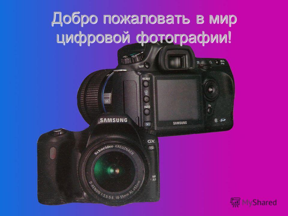 Добро пожаловать в мир цифровой фотографии!