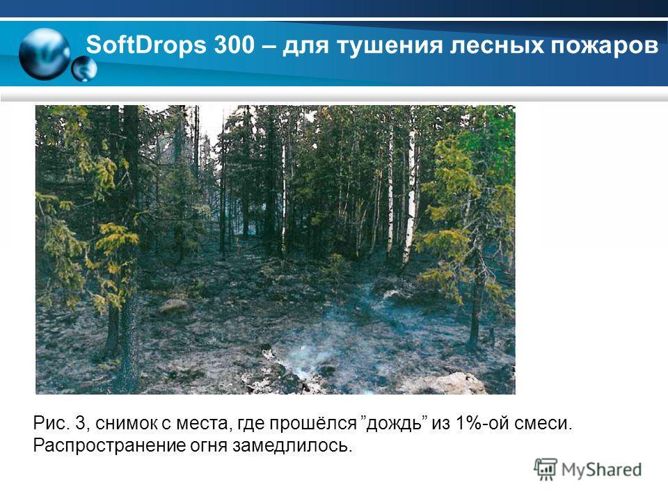 Рис. 3, снимок с места, где прошёлся дождь из 1%-ой смеси. Распространение огня замедлилось. SoftDrops 300 – для тушения лесных пожаров